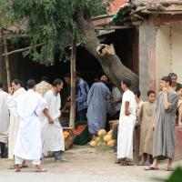 Taddert - Moscheegänger