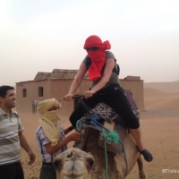 Kamelausritt mit Wüstensohn