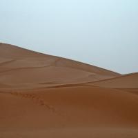 Zaouia-Sidi-Abd-en-Nebi Dünen