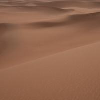 Zaouia-Sidi-Abd-en-Neb Dünen