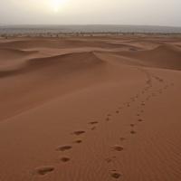Zaouia-Sidi-Abd-en-Neb Sonnenaufgang