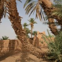 Mhamid Oase